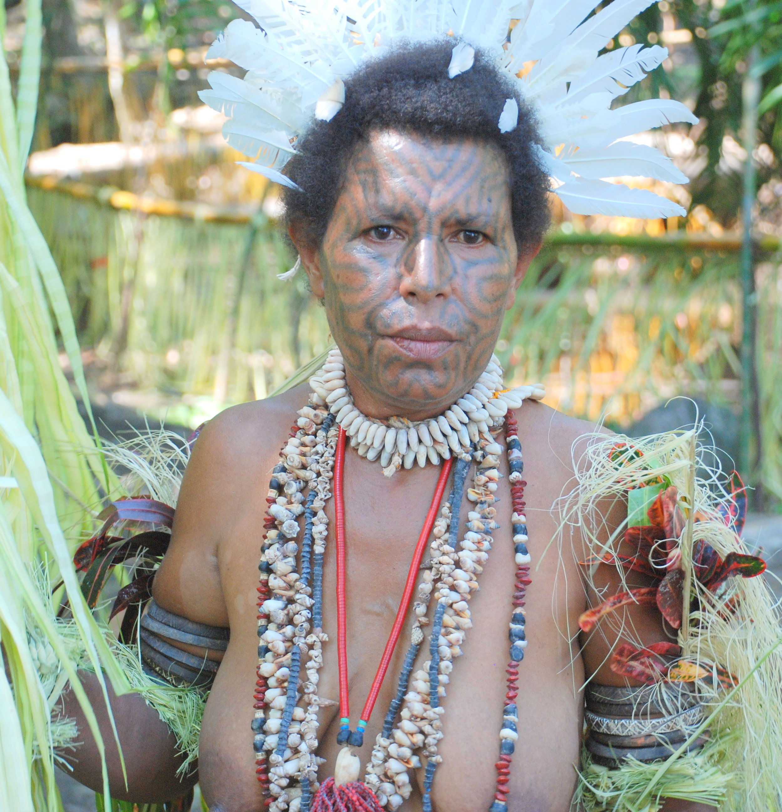 Papua New Guinea Carolyn S Travel Stories