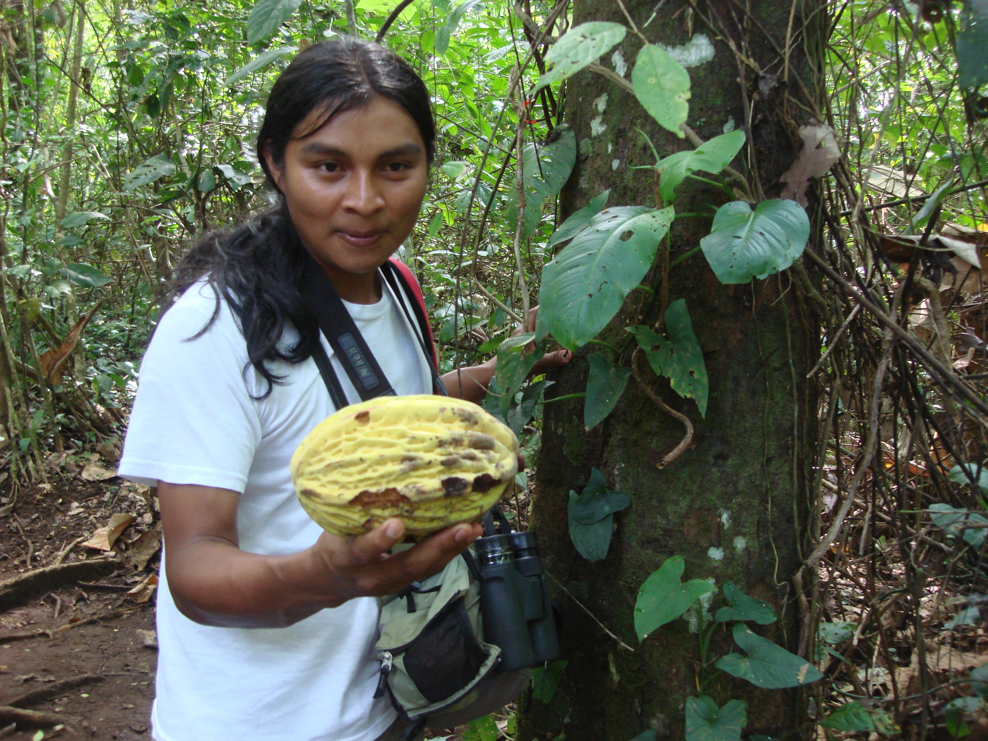 Costa rica carolyns travel stories the m4hsunfo