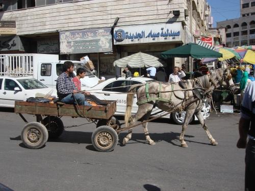 Israel 10-2010 2154
