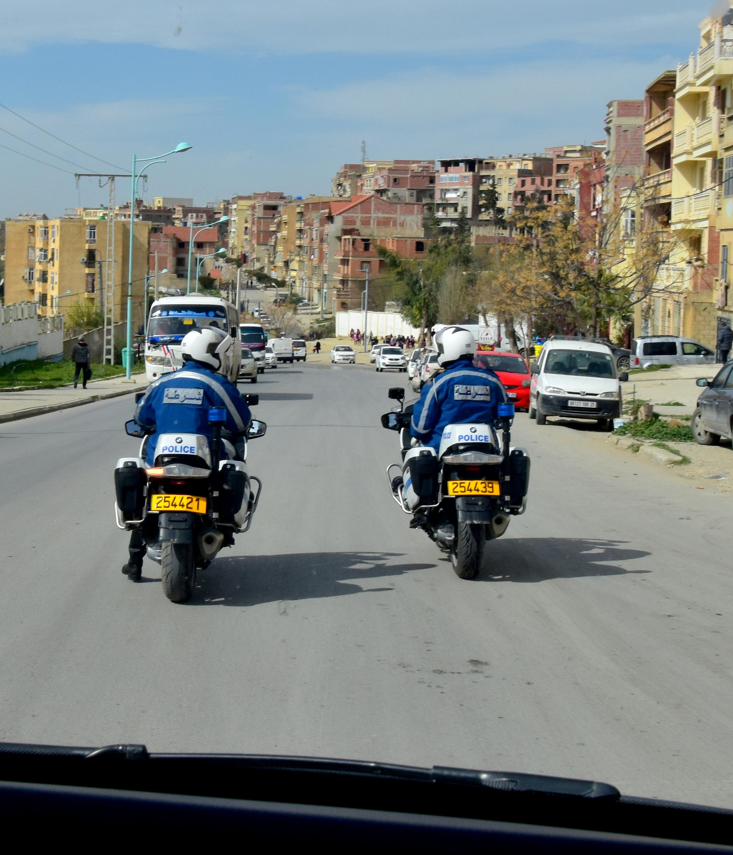 Sluts in Algeria
